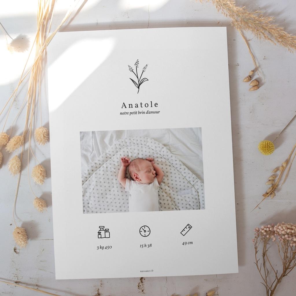Affiche Déco Chambre Enfant Brin noir et blanc gratuit