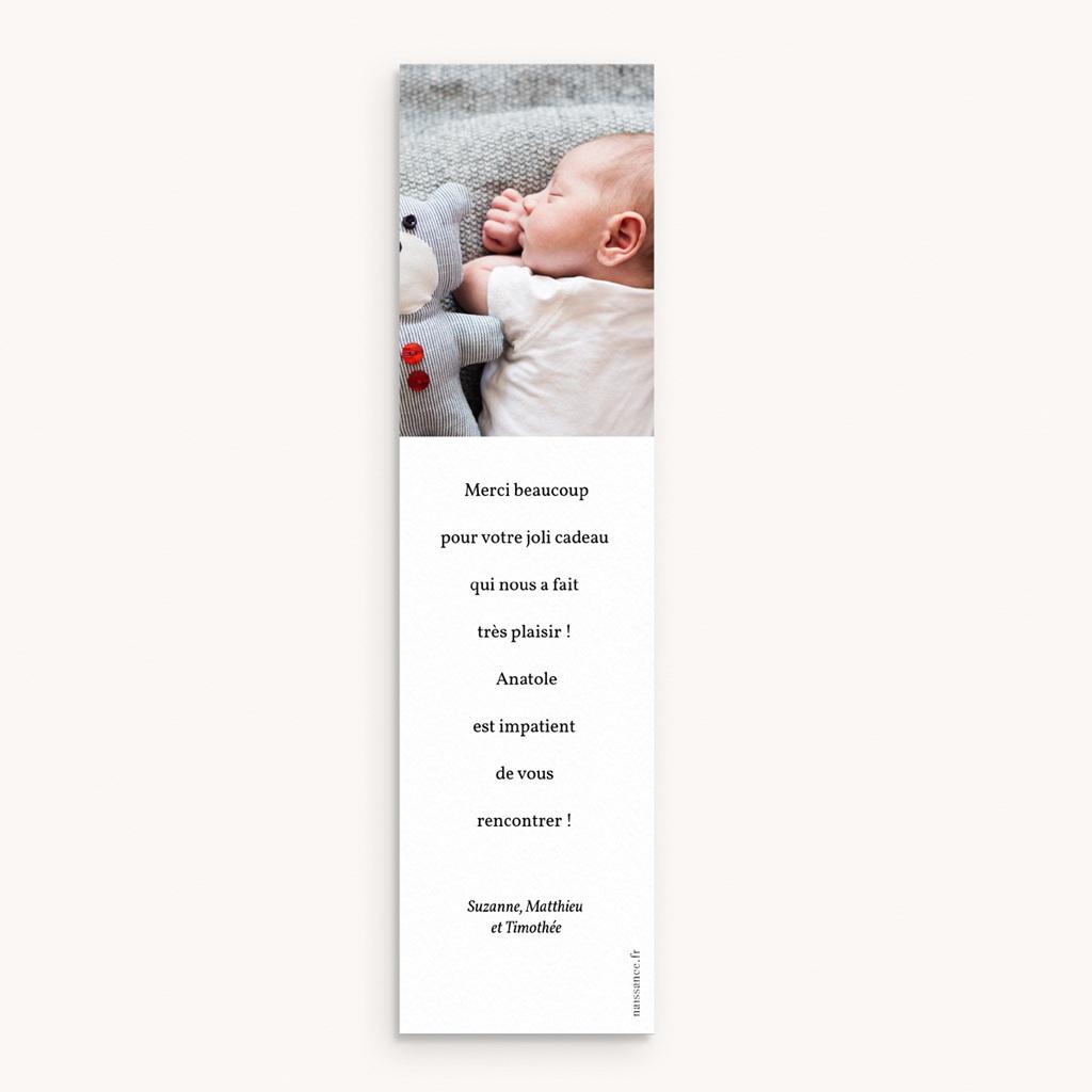 Carte de Remerciement Naissance Brin Floral, photo, 5,5 x 21 cm pas cher