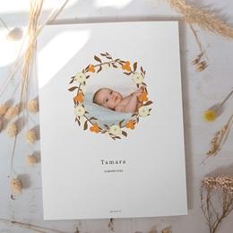 Affiche Déco Chambre Enfant Couronne d'oranges, Fleurs, Photo gratuit