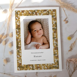 Affiche Déco Chambre Enfant Liberty cerisier, Fond Curry gratuit
