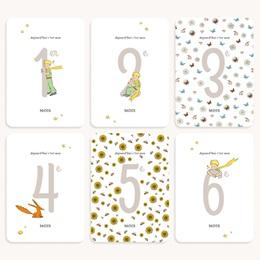 Carte Etape Les exploits du Petit Prince, 1ère année